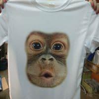 Футболка обезьяна _1
